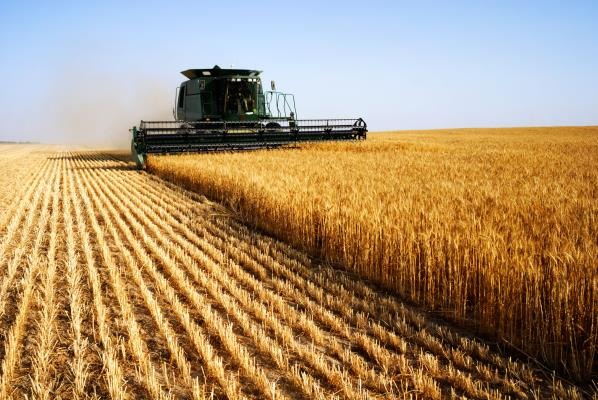 Statistics Canada Bumps Up 2018 Crop Estimates