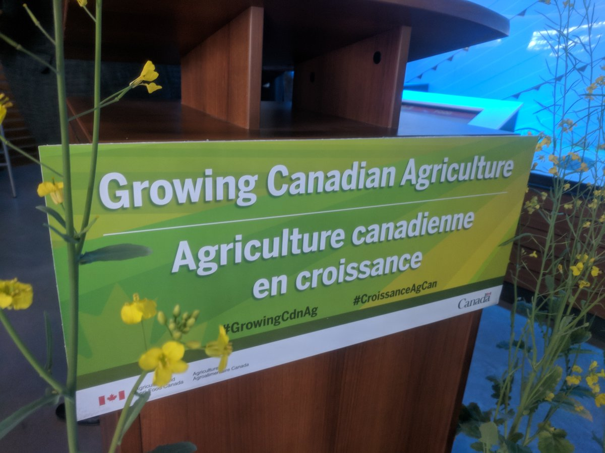 $20 Million Going to Canola Research