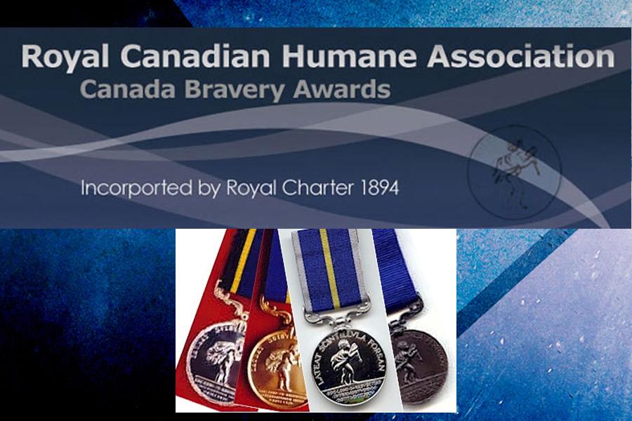 Saskatchewan Citizens Honoured For Bravery