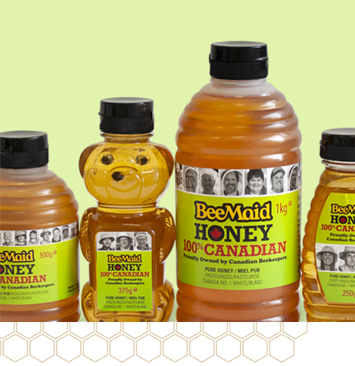 Saskatchewan Honey Production Dips