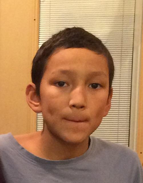 11-year-old Regina boy missing