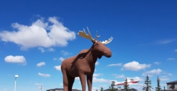 Mac the Moose Trying to Reclaim the Title | Country 600 CJWW