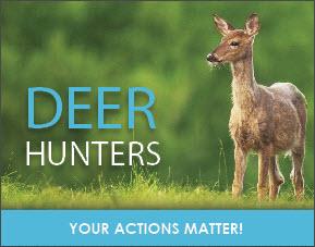 U.P. Lawmakers Respond To CWD Deer Announcement