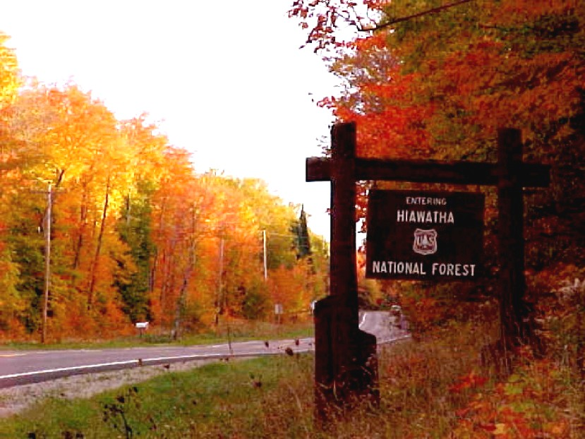 New Comment Period On Hiawatha Forest Plan
