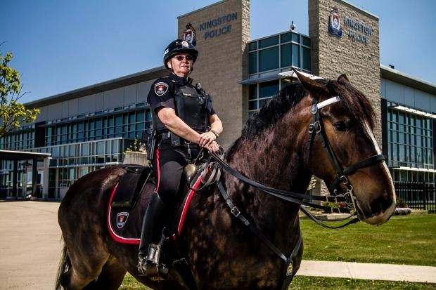 Algonquin Student Charged with Slapping a Horse