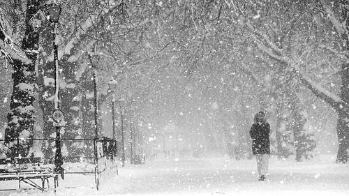 Heavy Snow Closes Schools Across Region