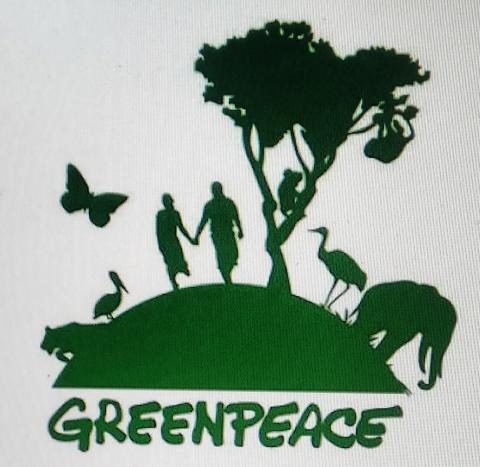 Greenpeace Takes on Ford PC's