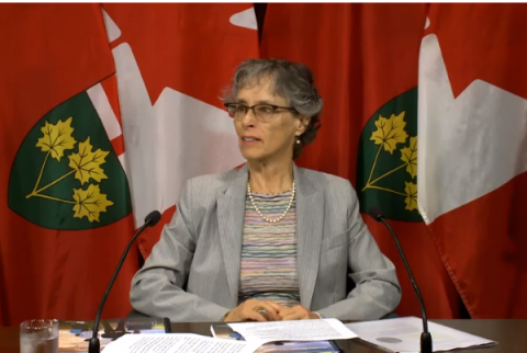 Commissioner Critical Of Ford Government