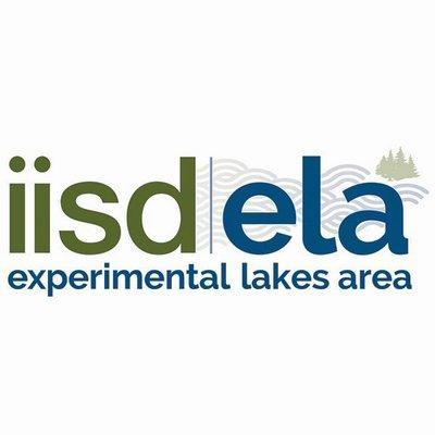ELA Looking At Future Projects