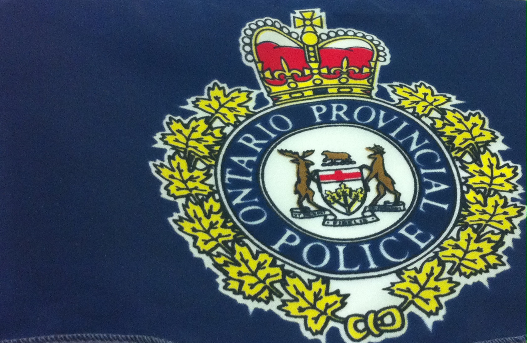 OPP Search For Stolen Items