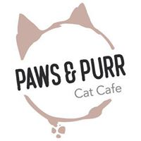 Cat Cafe To Open Next Year