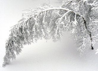 Environment Canada Predicts Region's First Snowstorm