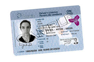 Ombudsman Uncovers Licensing Loophole