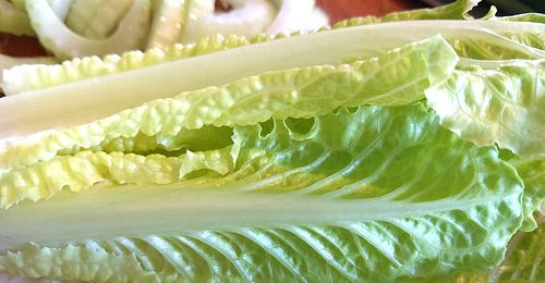 E-Coli Warning About Romaine Lettuce