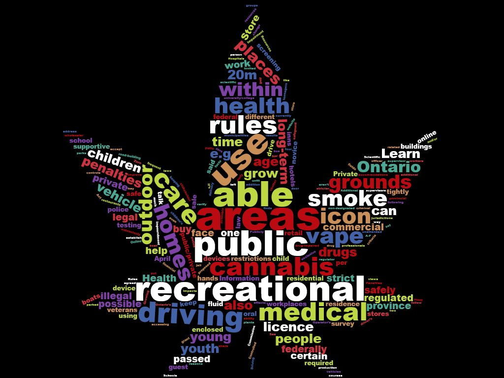 The City Polling Residents On Cannabis Stores