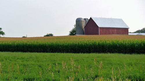 Workshops Scheduled to Focus on Farm, Food Entrepreneur Grants