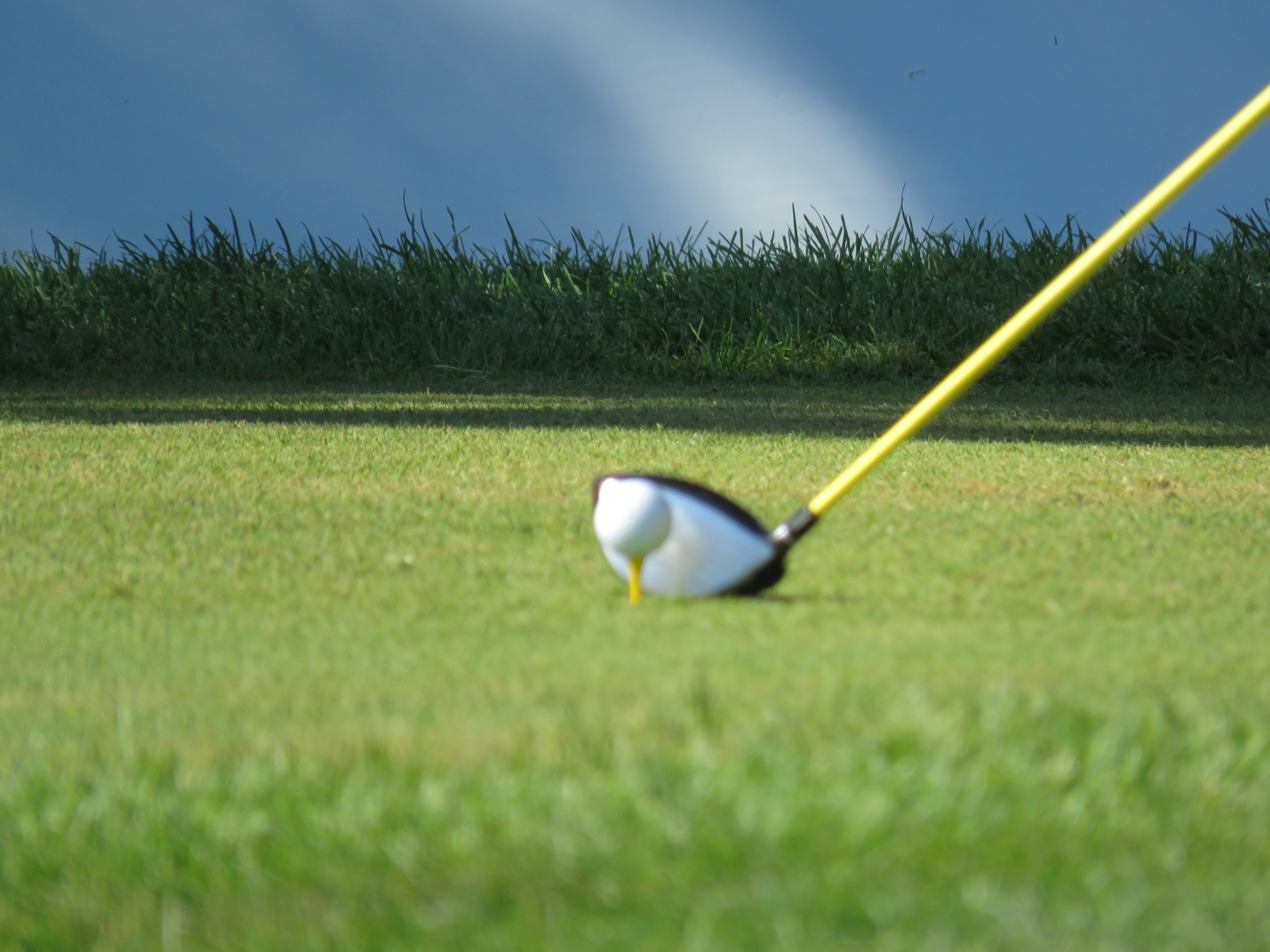 Annual Golf Outings Continue Generous Giving to Wisconsin FFA