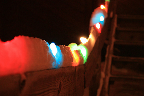 Lights in Lincoln Park starts Tonight