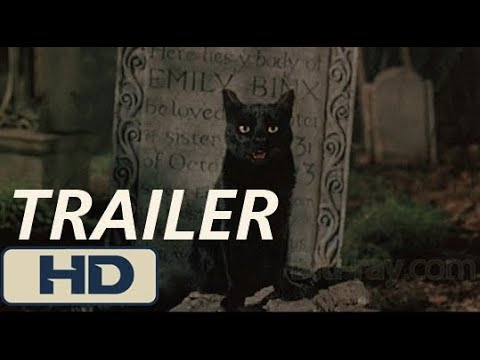 The First Trailer of Stephen King Remake Of Pet Sematary Is Here