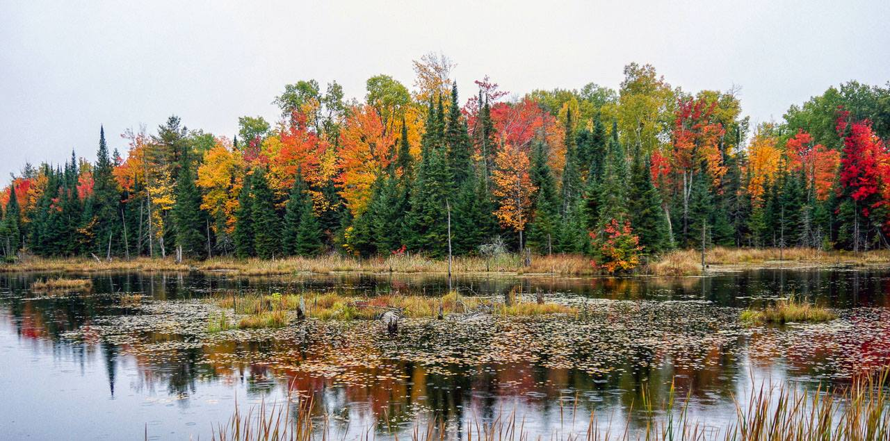Justin Anderson's Fall Color Tour 2018