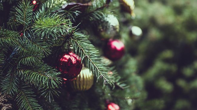 What Is The Perfect Christmas?