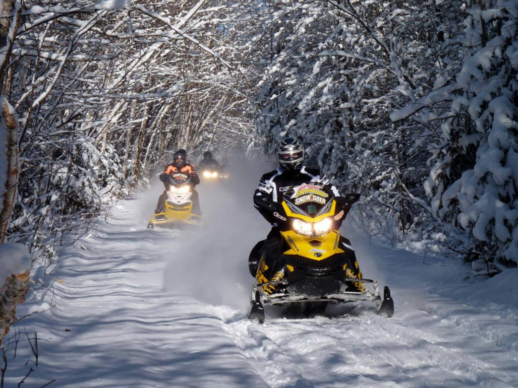 Snowmobile fatalities up