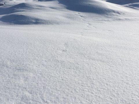 New and bigger snow dump