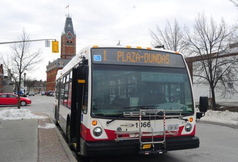 City bus involved in fender bender