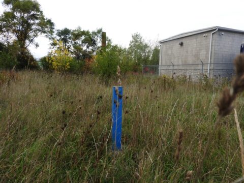 Belleville property not seriously polluted