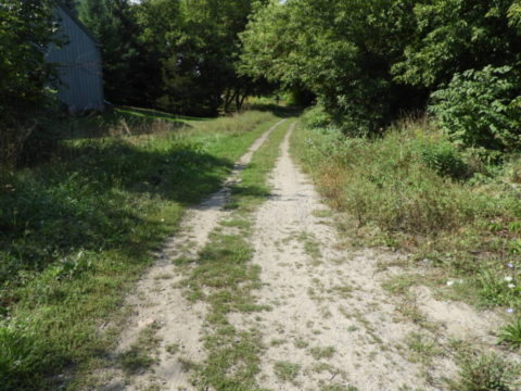 Major trail project in Prince Edward County underway