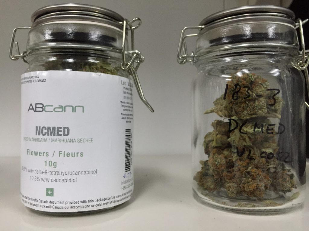 Loyalist enters cannabis research agreement with VIVO