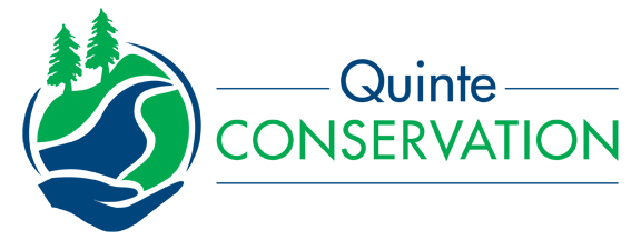 Level 2 Low Water Condition issued by Quinte Conservation
