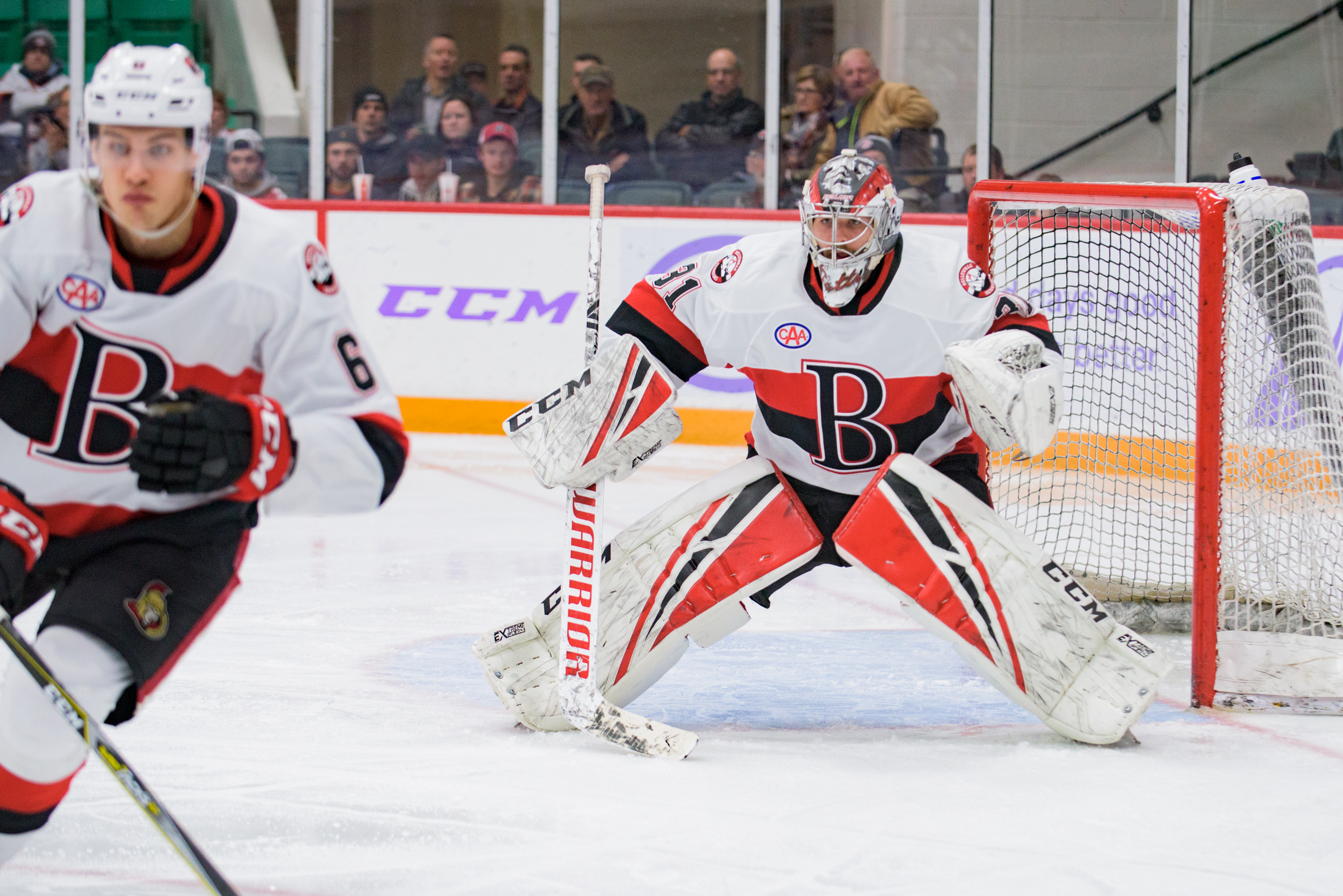 B-Sens end home stand with loss to Bridgeport