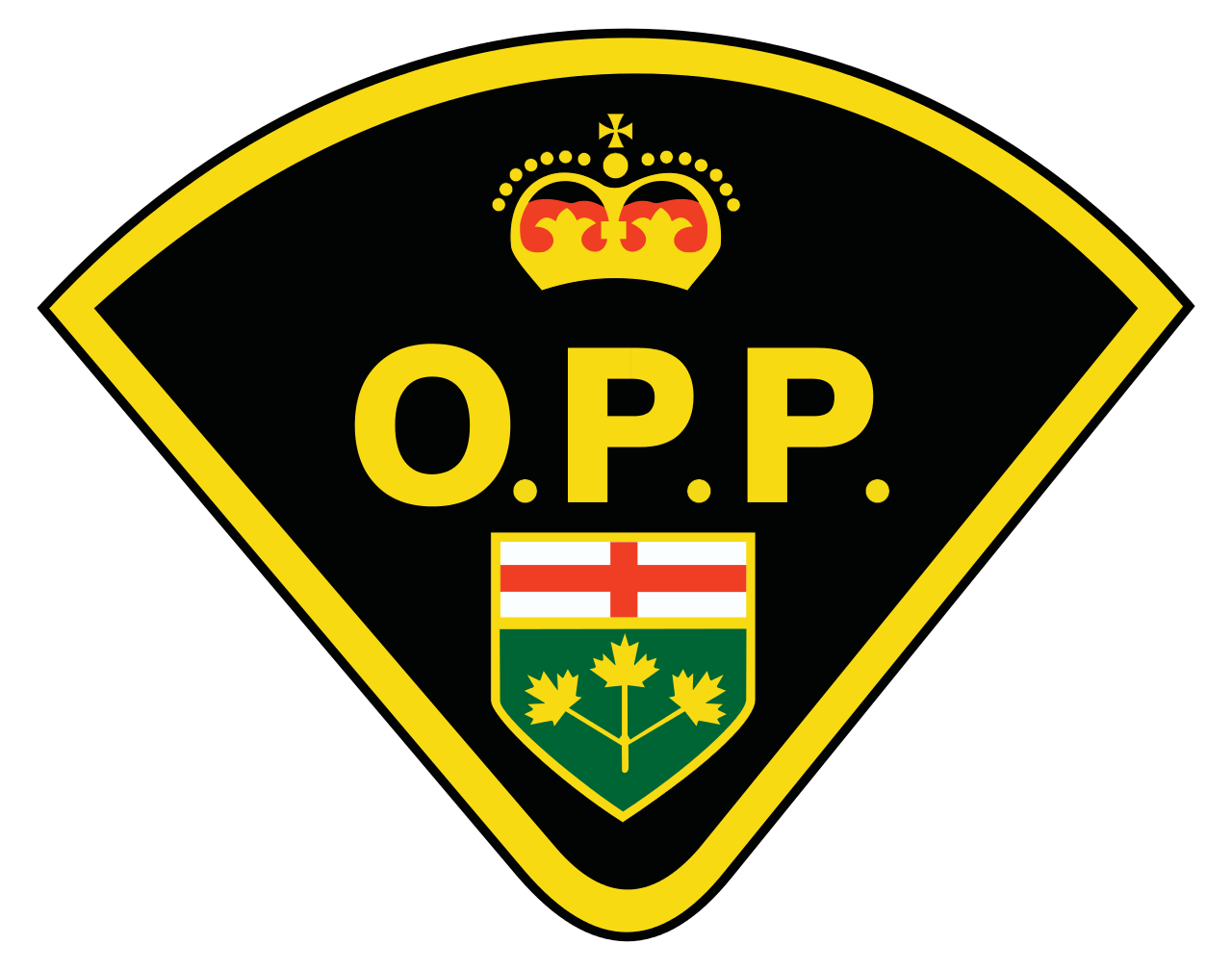 Lambton OPP identify man involved in fatal train and truck collision
