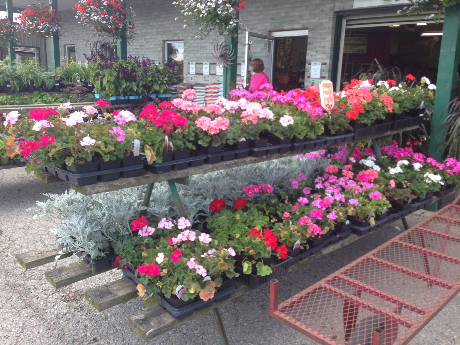Garden centre say business is blooming well this year