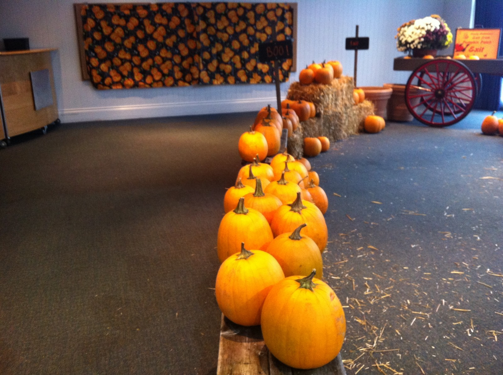 Families spend rainy Saturday at indoor pumpkin patch