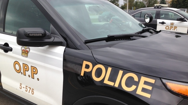 OPP charge two Ingersoll teeanagers for trespassing
