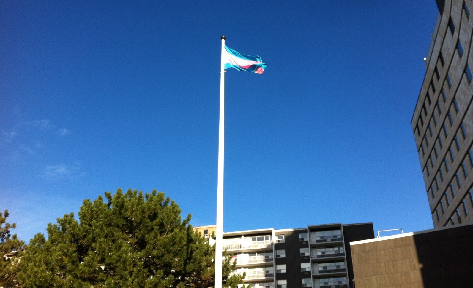 Trans pride flag flown at London City Hall sign of progress