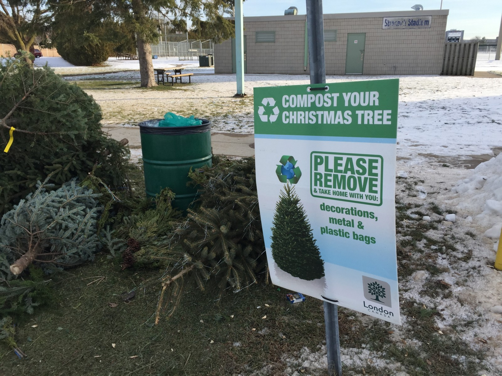 London's options for Christmas tree disposal
