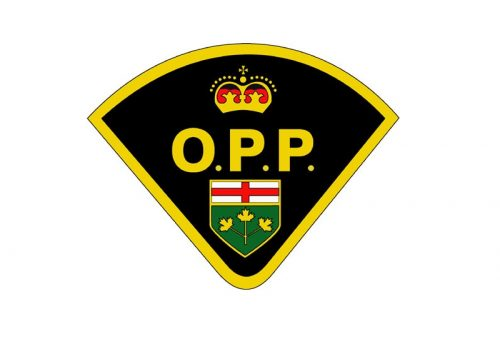 Middlesex County OPP investigating fatal collision on Vanneck Road