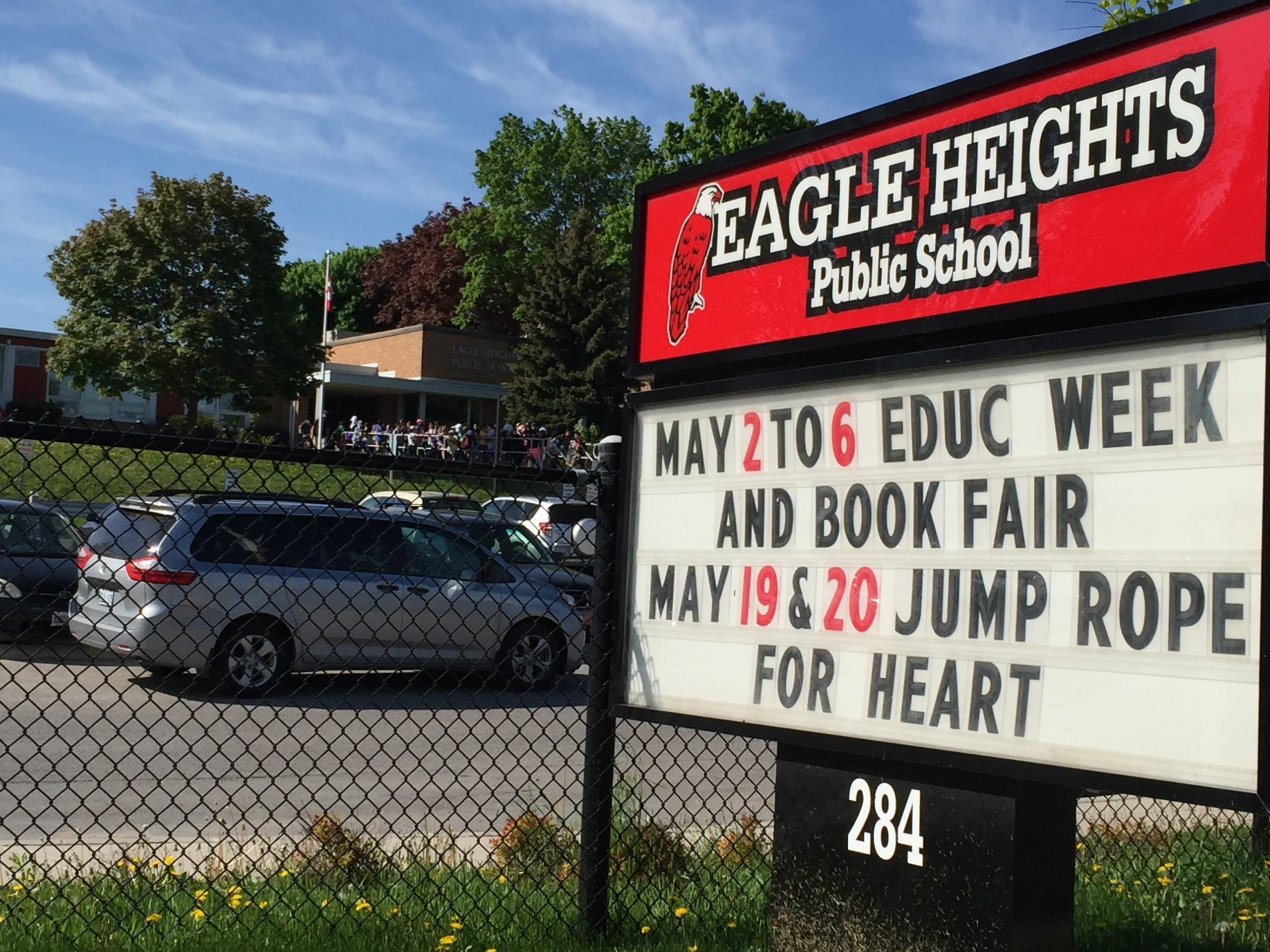 Eagle Heights soars above the rest for Syrians