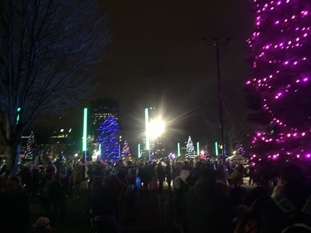 Lighting of the lights at Victoria Park