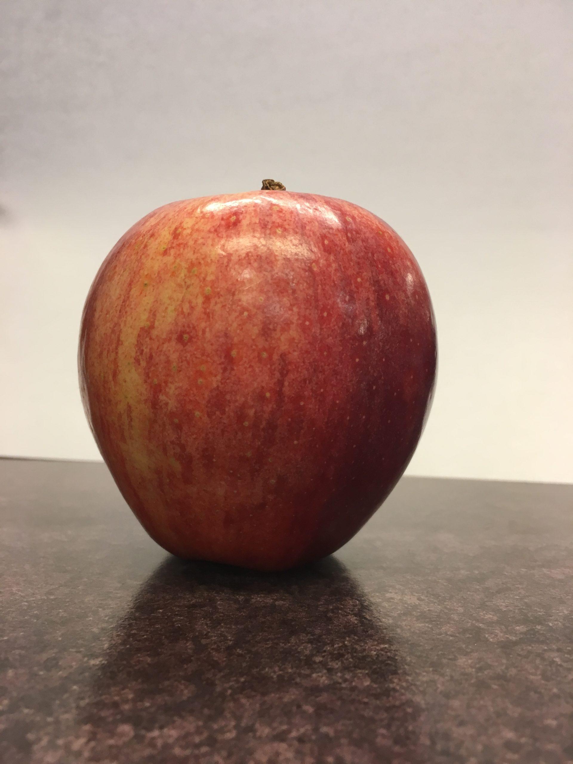 Ontario Apple Farmers Anticipate High Quality Crop Despite Lower Volume