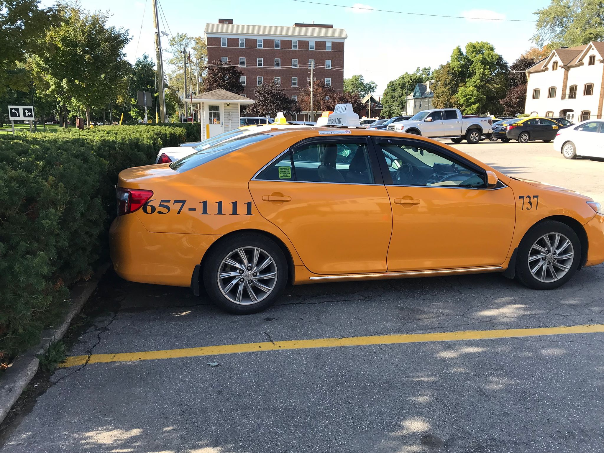 Potential bylaw changes have taxi businesses in uproar