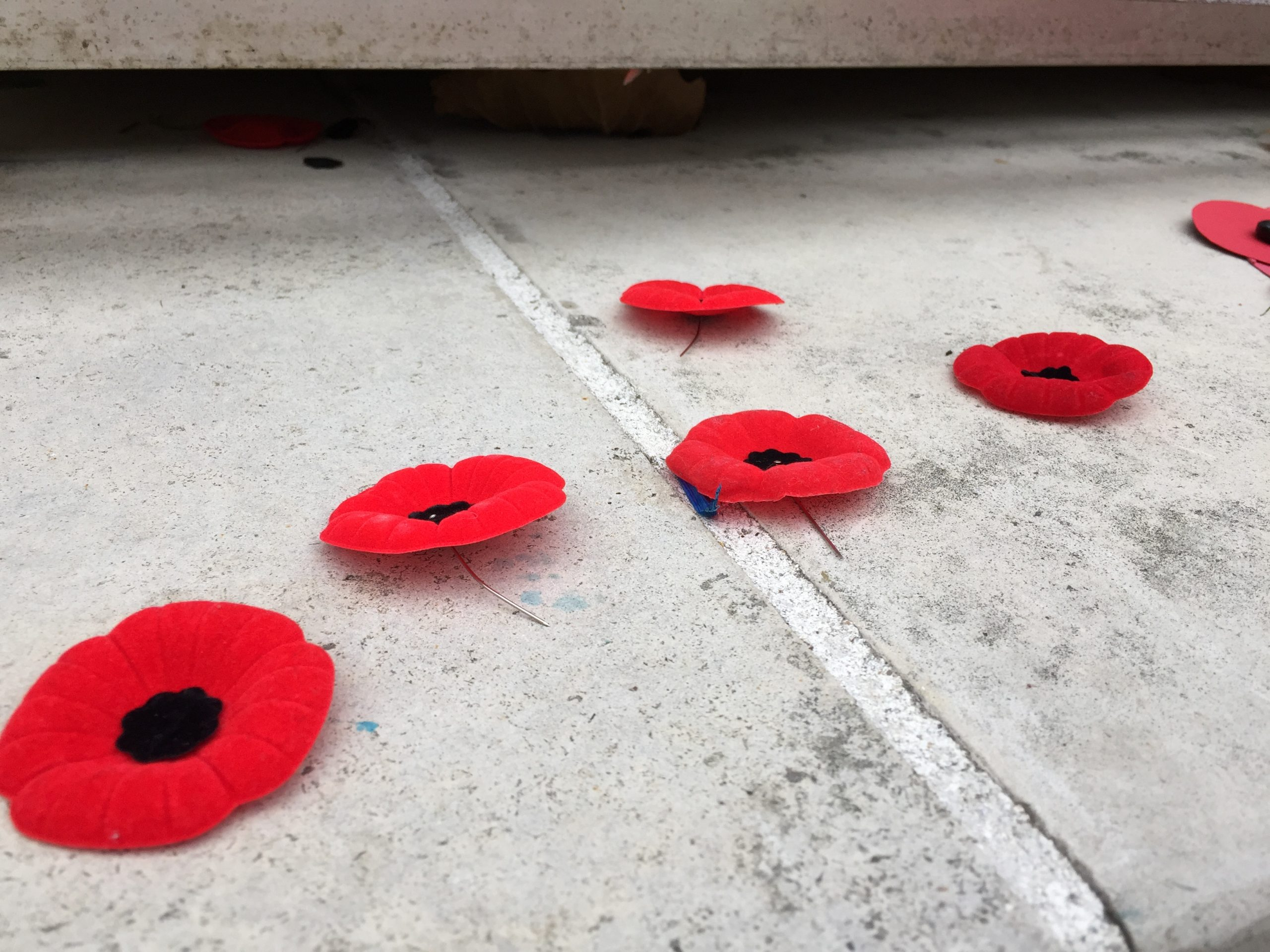 A quiet look at war memorials after remembrance day.
