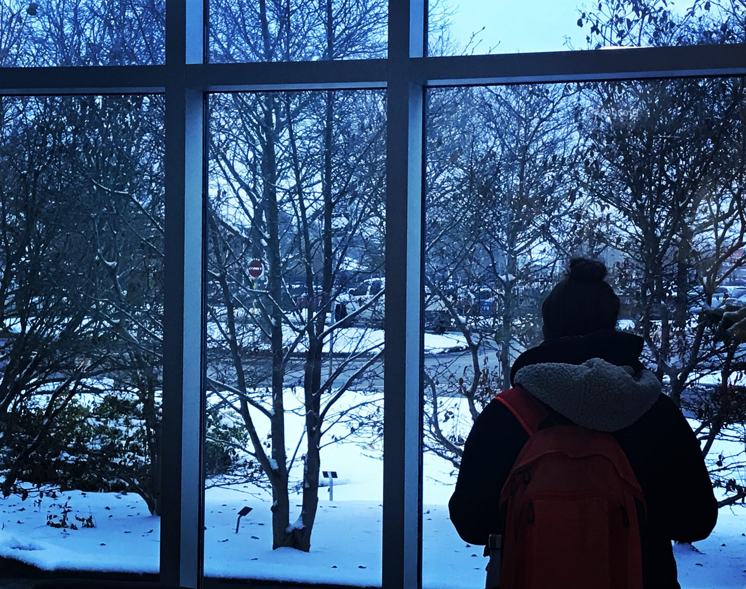 Are international students ready for winter?