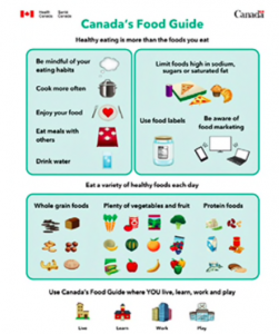 Graphic Of A Draft Version Of The Revised Food Guide Shown To Focus Groups Image Shows The Elimination Of The Dairy Food Group P O Health Canada Via