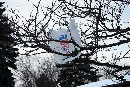 HALLELUJAH!!!! Metro Plans On Banning Plastic Bags At Retailers!