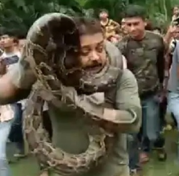 Snakes! One Swallows A Woman Whole, The Other Puts A Park Ranger In A Choke Hold