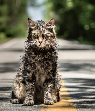 New Pet Sematary Movie Out in April